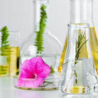 plants-laboratory-glassware-skincare-products-drugs-chemical-researches-concept (1)
